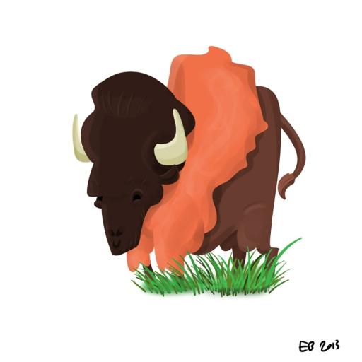 130224_buffalo