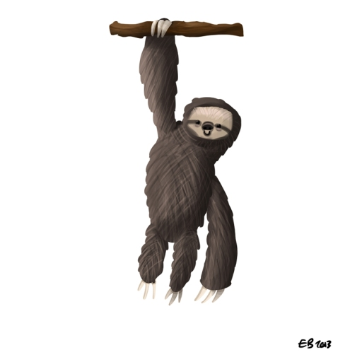130228_sloth
