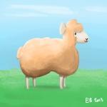 130308_sheep