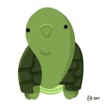 130422_turtle