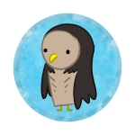 131126_owl