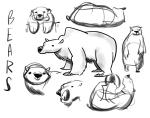 140108_bears